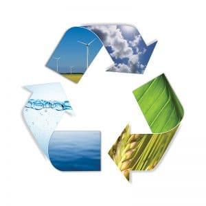 Umweltschutz Beratung