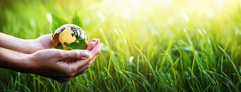 Umweltschutz in Unternehmen